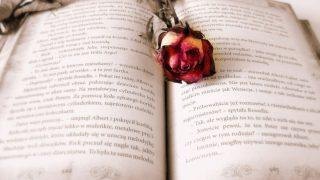 世界の偉人たちが残した恋愛の名言に学ぶ35選